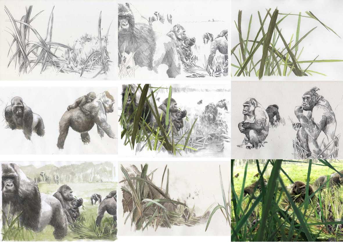 skizzenseite-gorillas
